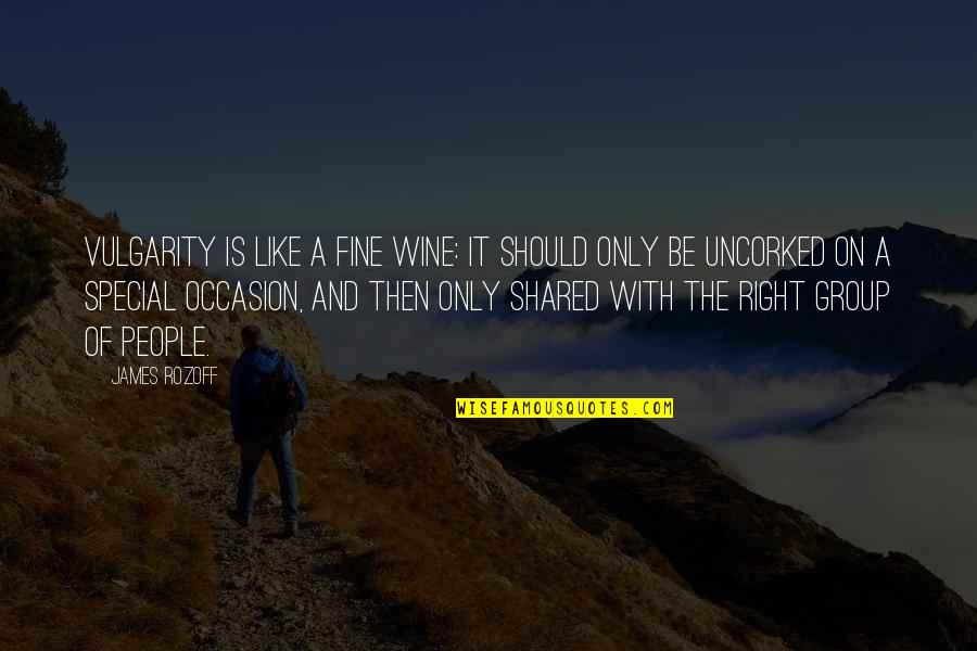 Be Like Wine Quotes By James Rozoff: Vulgarity is like a fine wine: it should