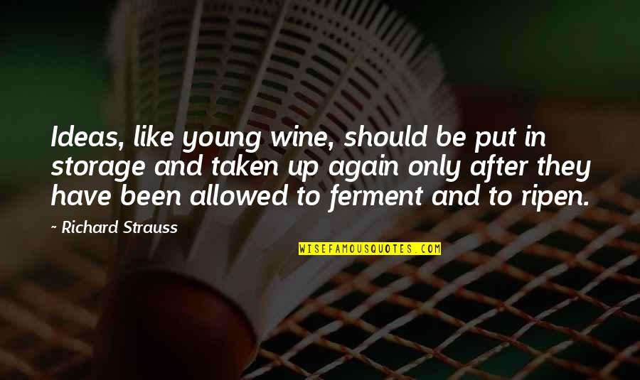 Be Like Wine Quotes By Richard Strauss: Ideas, like young wine, should be put in