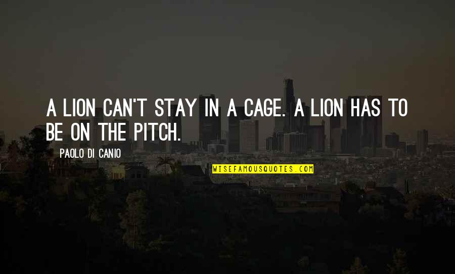 Be Lion Quotes By Paolo Di Canio: A lion can't stay in a cage. A