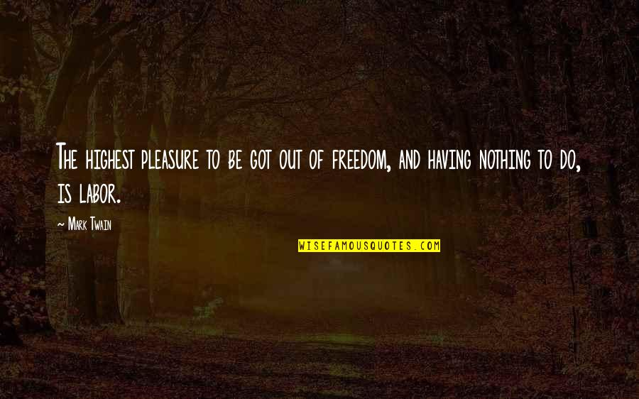 Be Nothing Quotes By Mark Twain: The highest pleasure to be got out of
