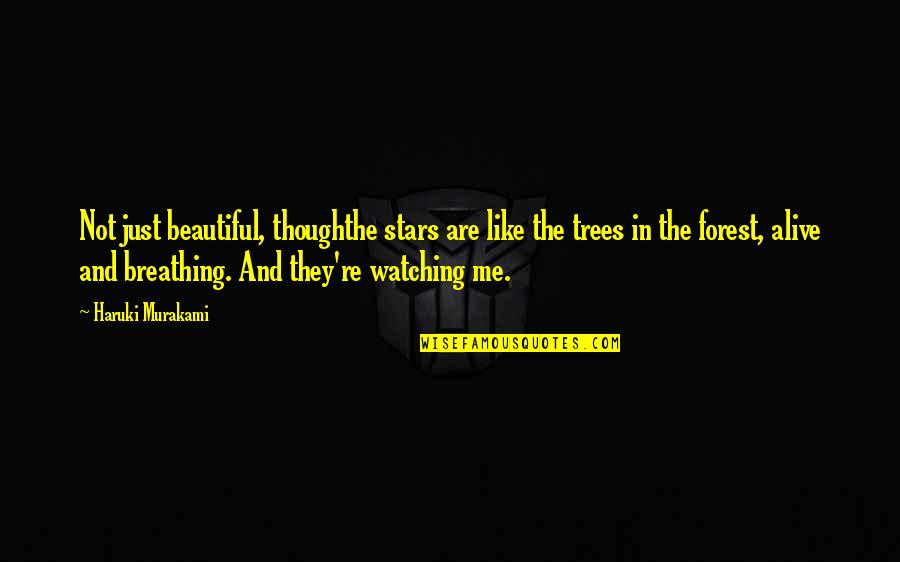 Beautiful Forest Quotes By Haruki Murakami: Not just beautiful, thoughthe stars are like the