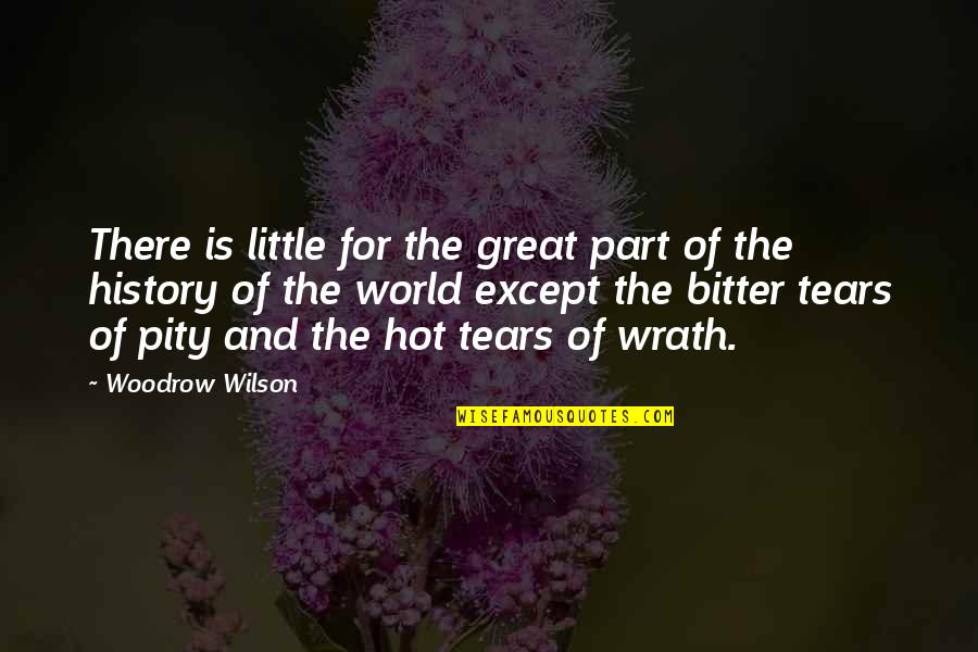 Beautiful Sites Quotes By Woodrow Wilson: There is little for the great part of