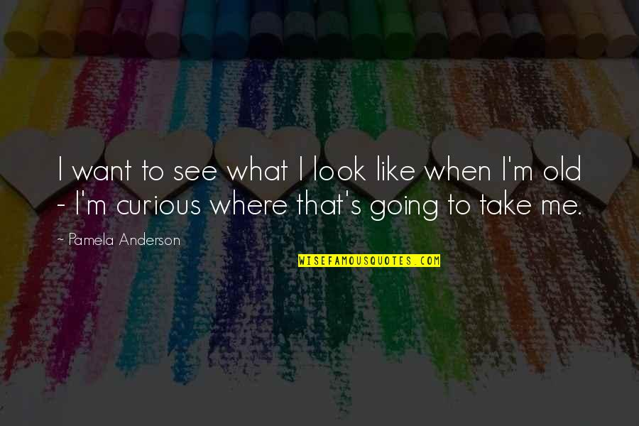 Beautiful Souls Book Quotes By Pamela Anderson: I want to see what I look like