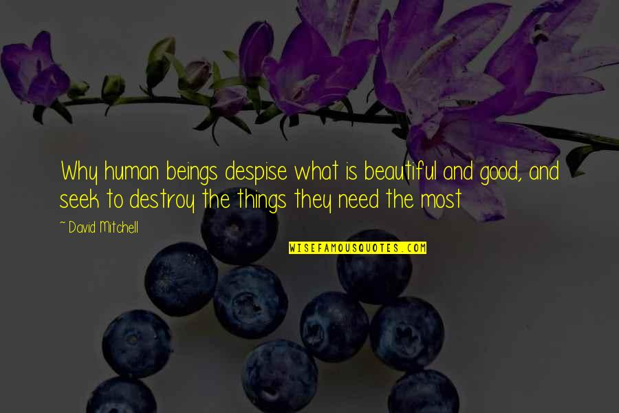 Beautiful Things Quotes By David Mitchell: Why human beings despise what is beautiful and