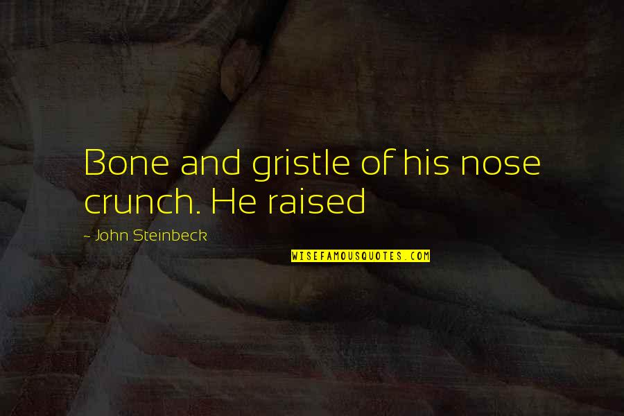 Beautiful View Quotes By John Steinbeck: Bone and gristle of his nose crunch. He