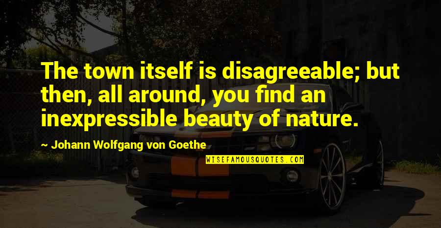 Beauty All Around Quotes By Johann Wolfgang Von Goethe: The town itself is disagreeable; but then, all