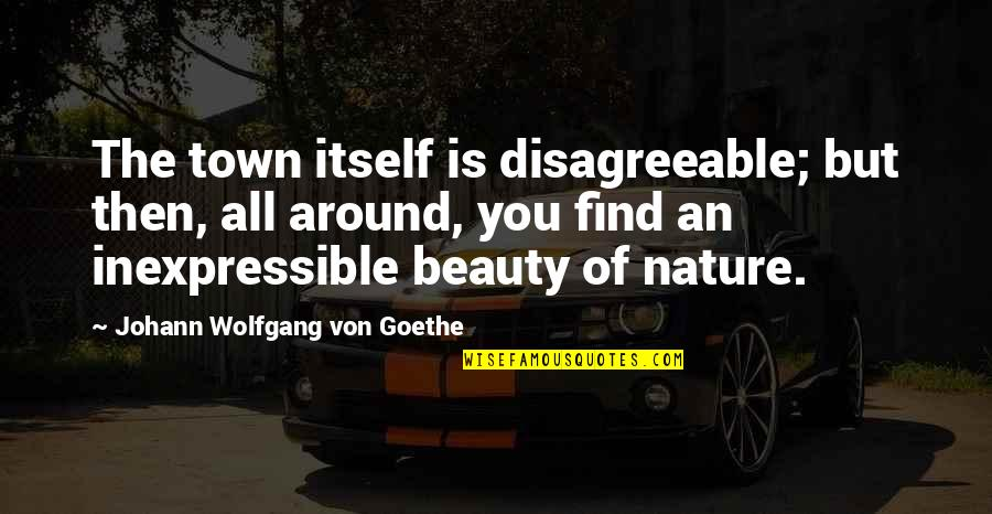 Beauty All Around Us Quotes By Johann Wolfgang Von Goethe: The town itself is disagreeable; but then, all