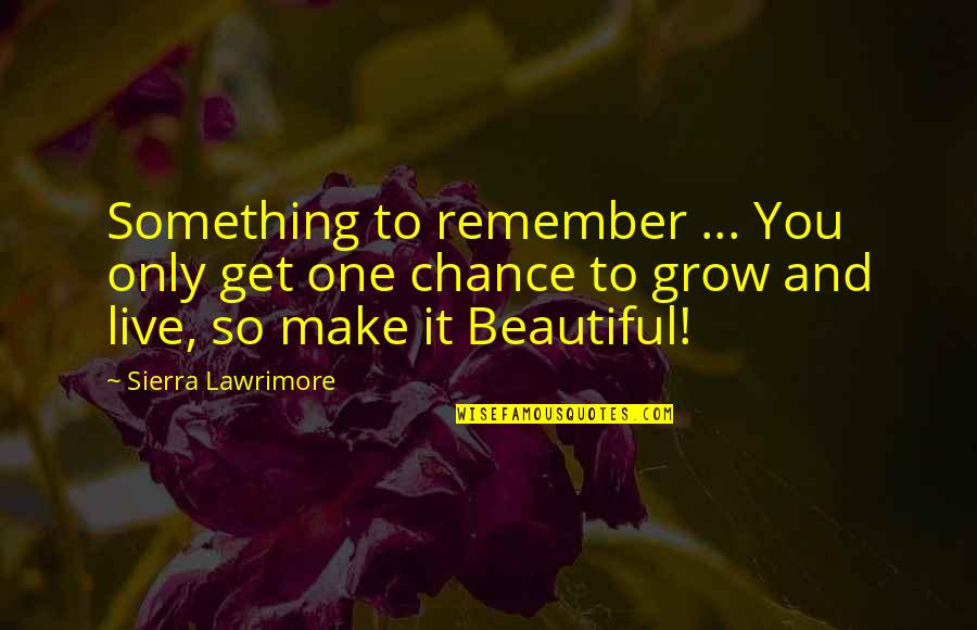 Beauty Love And Life Quotes By Sierra Lawrimore: Something to remember ... You only get one