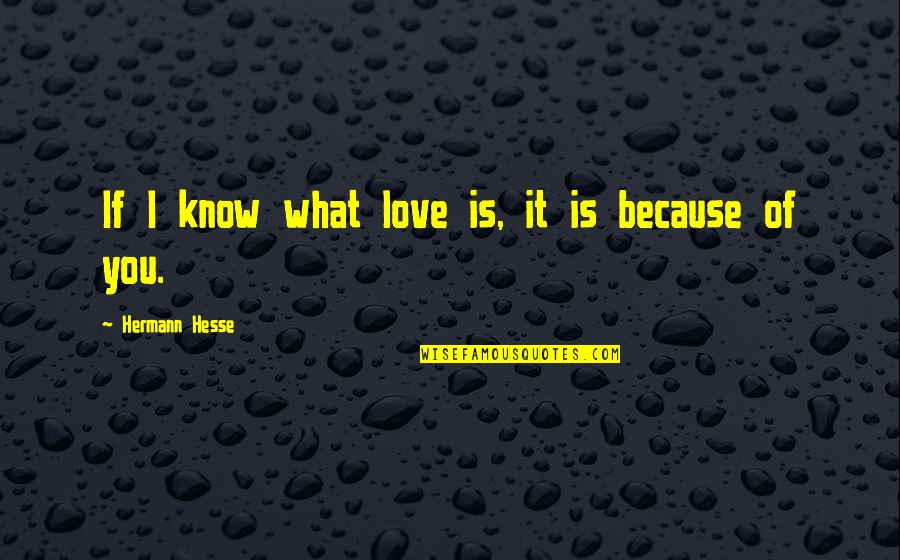 Because I Love You Quotes By Hermann Hesse: If I know what love is, it is