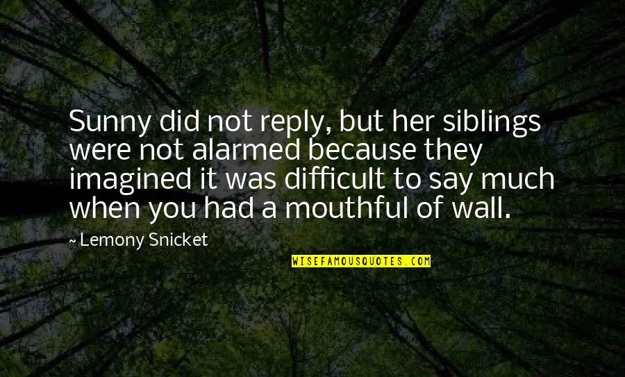 Because Of Her Quotes By Lemony Snicket: Sunny did not reply, but her siblings were