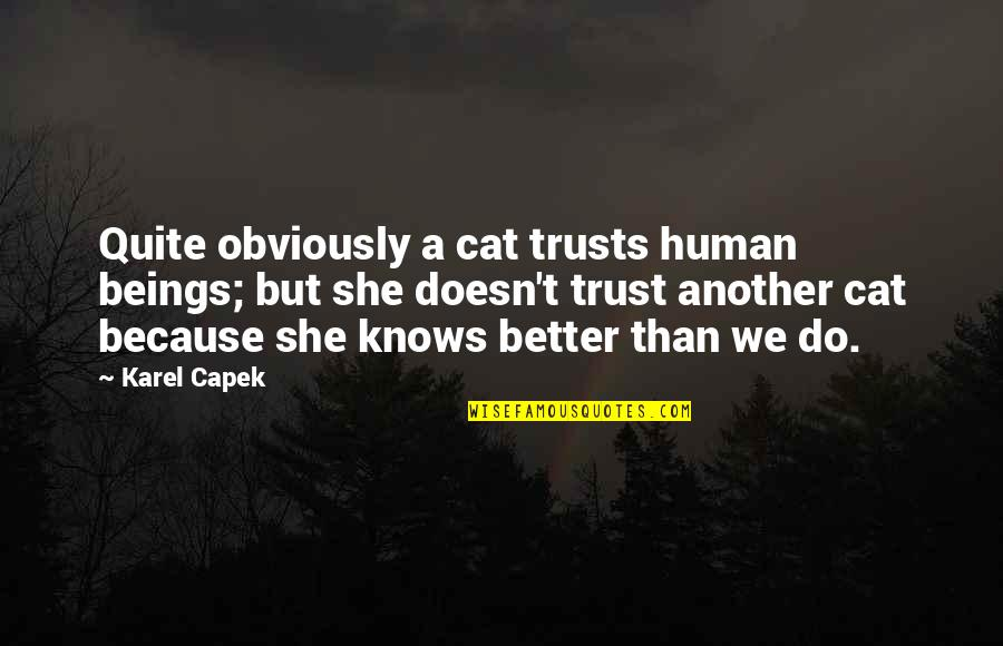 Because She Quotes By Karel Capek: Quite obviously a cat trusts human beings; but