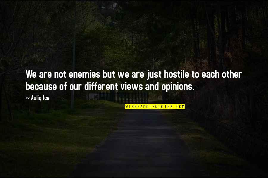 Because We Are Friends Quotes By Auliq Ice: We are not enemies but we are just