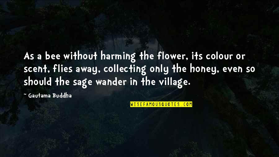 Bee Quotes By Gautama Buddha: As a bee without harming the flower, its