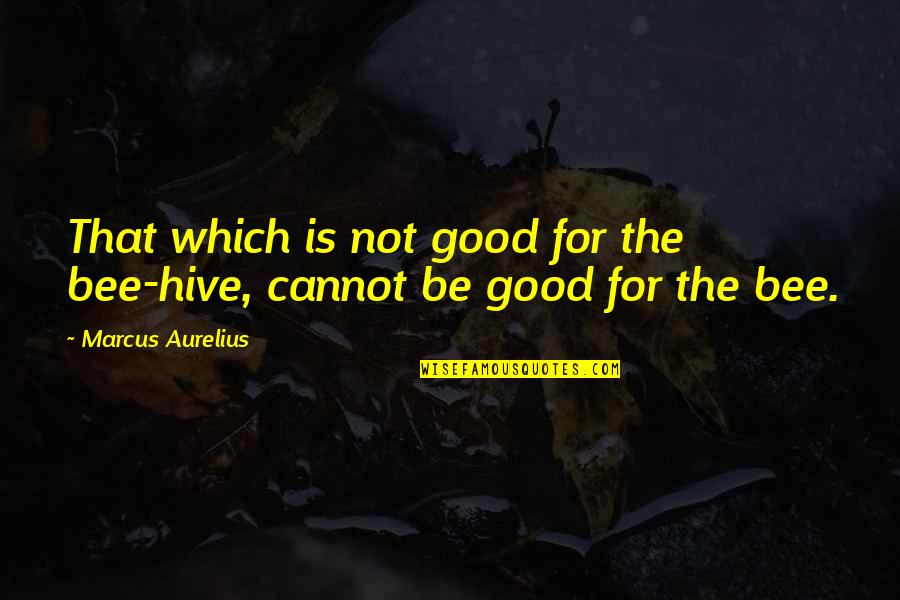 Bee Quotes By Marcus Aurelius: That which is not good for the bee-hive,