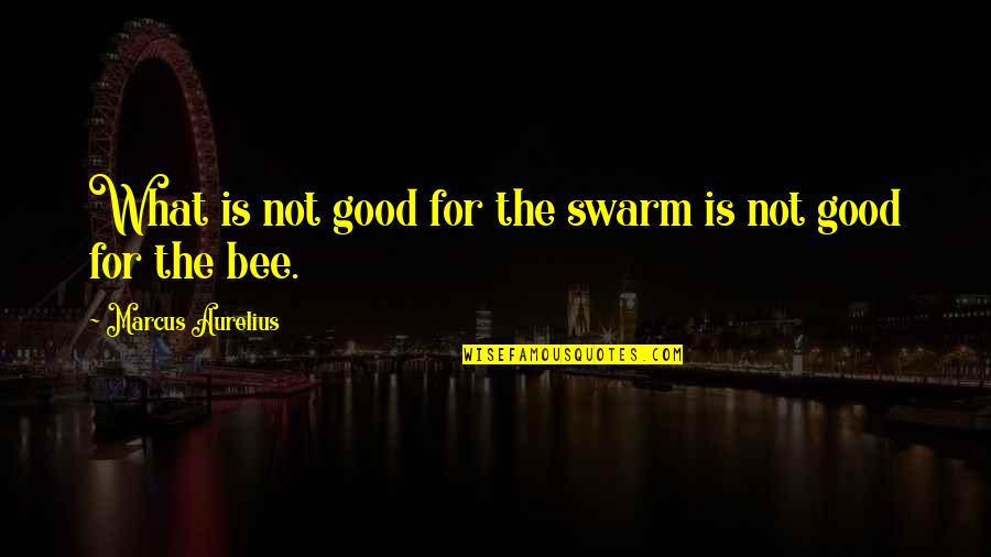Bee Quotes By Marcus Aurelius: What is not good for the swarm is