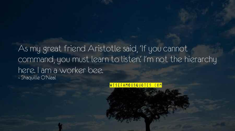Bee Quotes By Shaquille O'Neal: As my great friend Aristotle said, 'If you