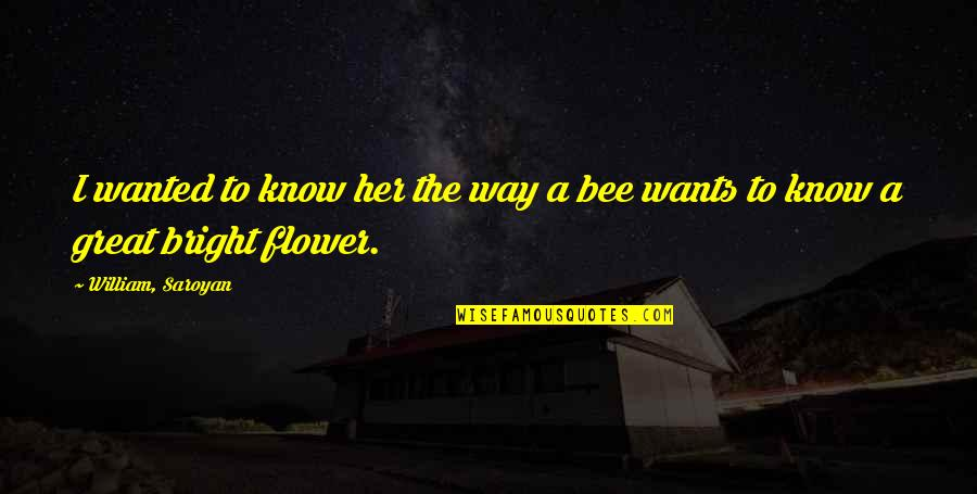 Bee Quotes By William, Saroyan: I wanted to know her the way a
