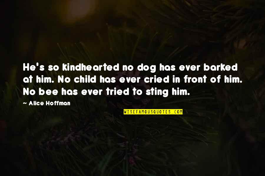 Bee Sting Quotes By Alice Hoffman: He's so kindhearted no dog has ever barked