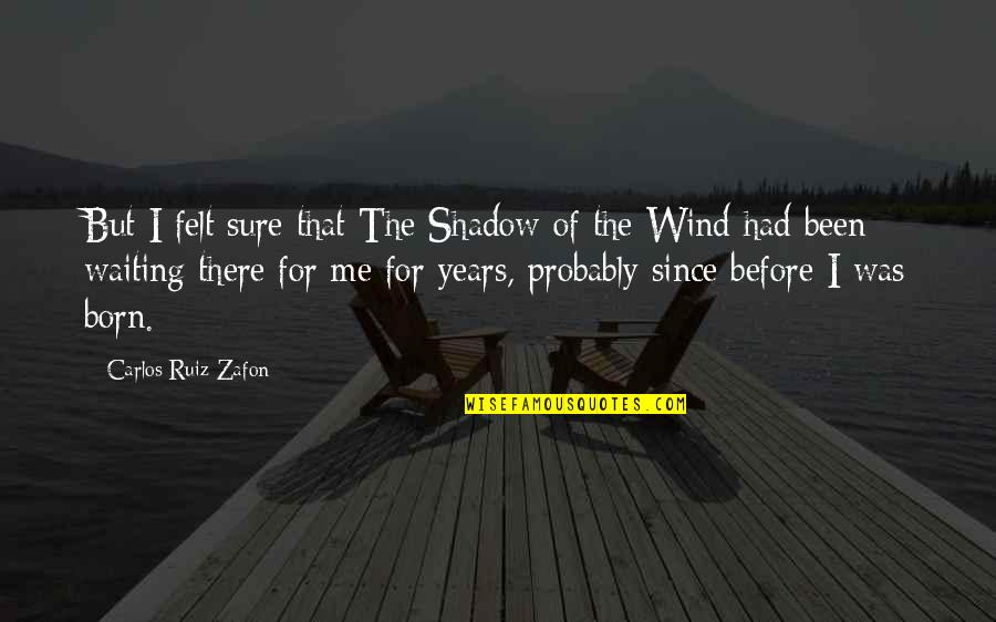 Been There Before Quotes By Carlos Ruiz Zafon: But I felt sure that The Shadow of