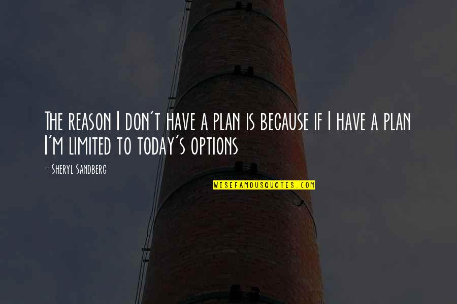 Beer Pub Quotes By Sheryl Sandberg: The reason I don't have a plan is