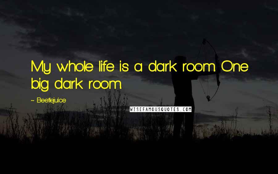 Beetlejuice quotes: My whole life is a dark room. One big dark room.