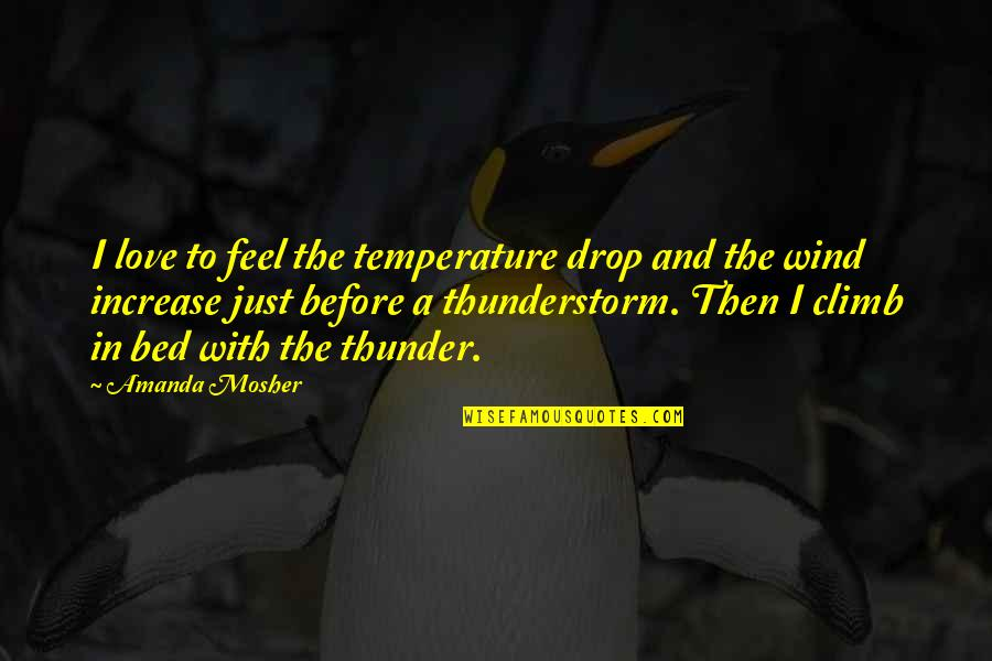 Before Bed Love Quotes By Amanda Mosher: I love to feel the temperature drop and