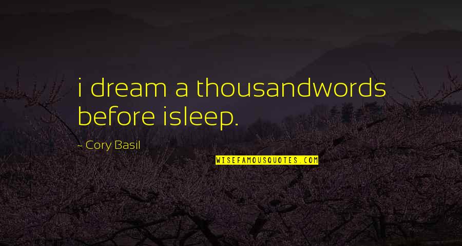 Before You Sleep Quotes By Cory Basil: i dream a thousandwords before isleep.
