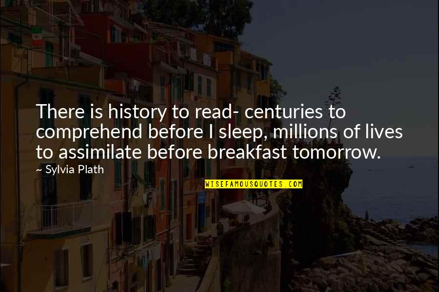 Before You Sleep Quotes By Sylvia Plath: There is history to read- centuries to comprehend
