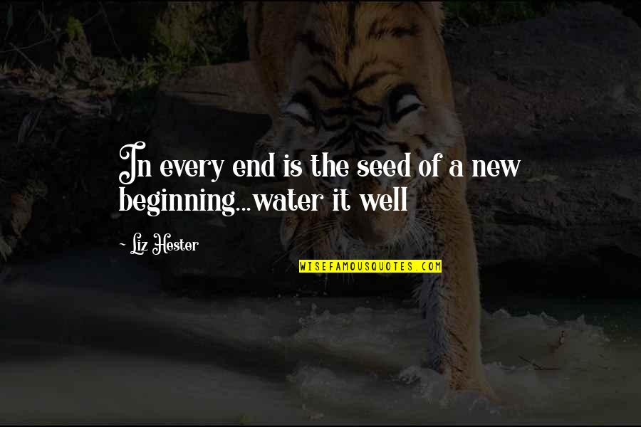 Beginning Of A New End Quotes By Liz Hester: In every end is the seed of a