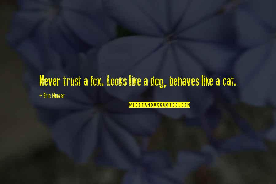 Behaves Quotes By Erin Hunter: Never trust a fox. Looks like a dog,