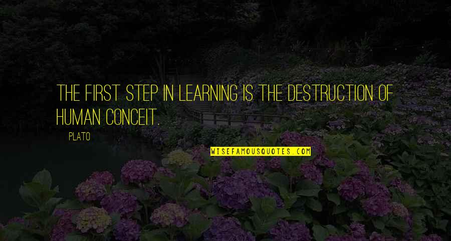 Being An Old Fashioned Girl Quotes By Plato: The first step in learning is the destruction