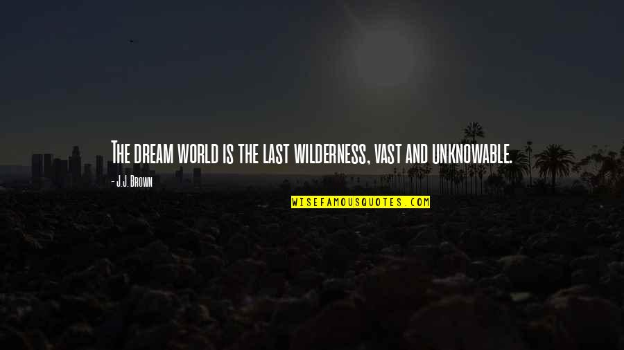Being Anything You Want To Be Quotes By J.J. Brown: The dream world is the last wilderness, vast