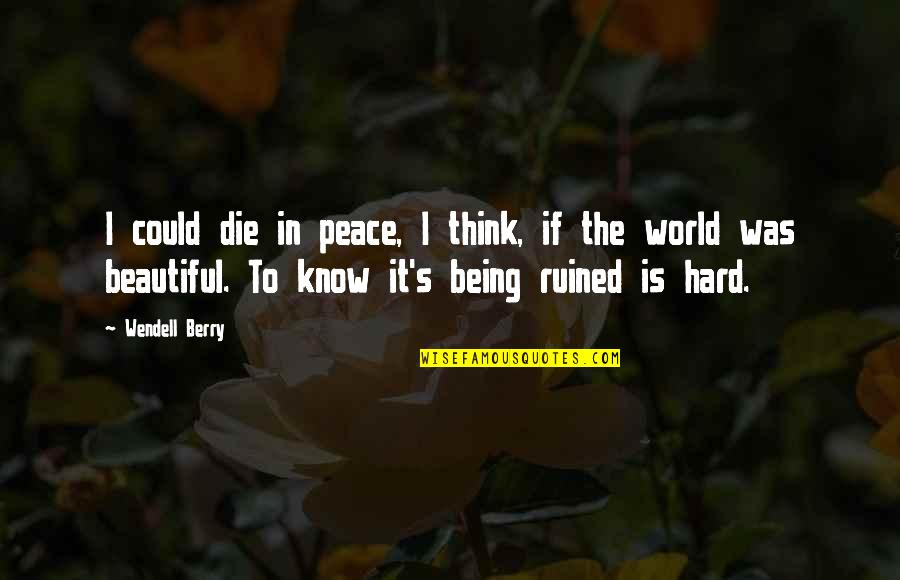 Being At Peace With The World Quotes By Wendell Berry: I could die in peace, I think, if