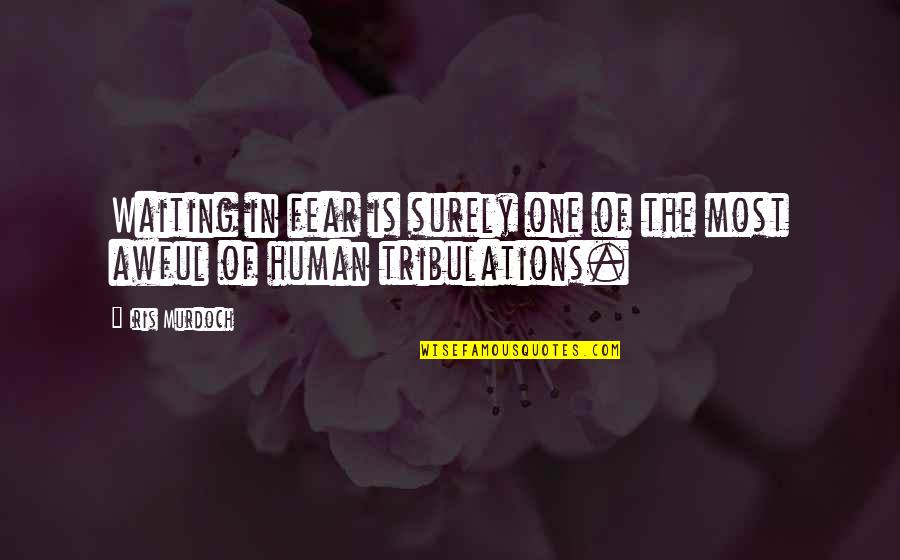 Being Freed From Prison Quotes By Iris Murdoch: Waiting in fear is surely one of the