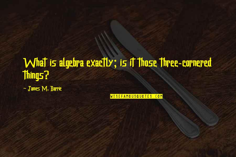 Being Friends Before Dating Quotes By James M. Barrie: What is algebra exactly; is it those three-cornered