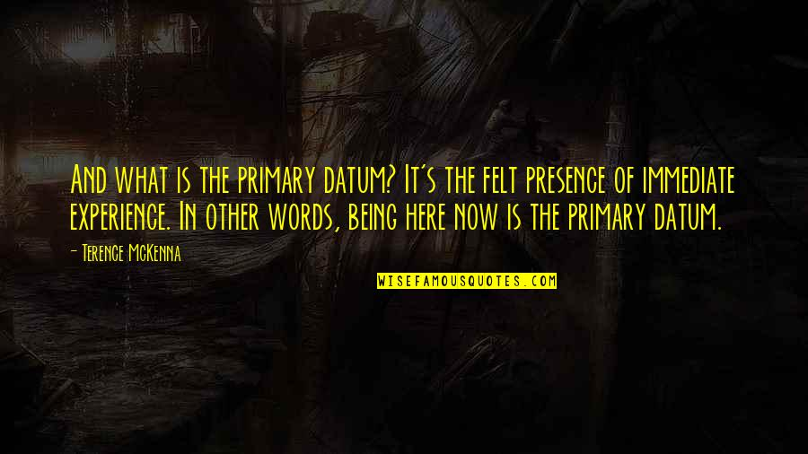 Being Here Now Quotes By Terence McKenna: And what is the primary datum? It's the