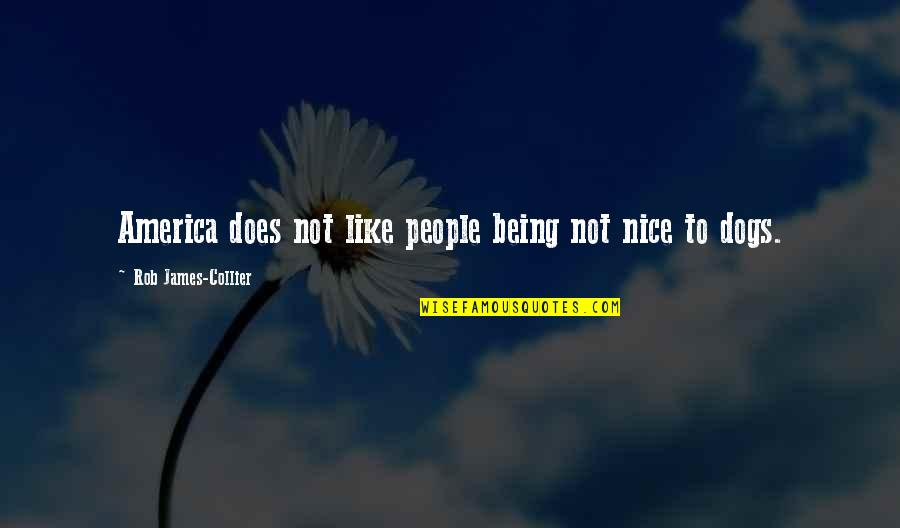 Being Nice To People Quotes By Rob James-Collier: America does not like people being not nice