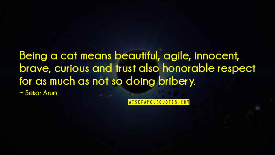 Being Not Beautiful Quotes By Sekar Arum: Being a cat means beautiful, agile, innocent, brave,