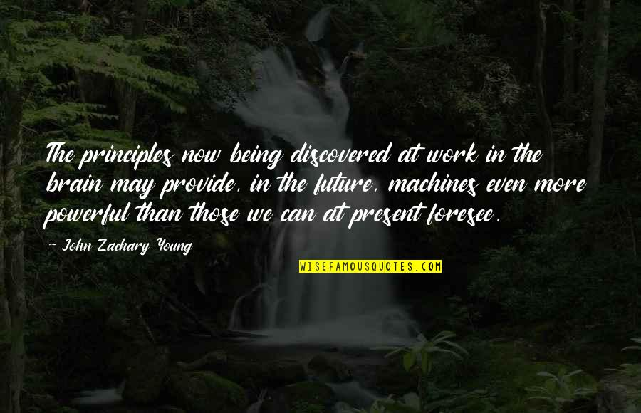 Being Out Of Work Quotes By John Zachary Young: The principles now being discovered at work in
