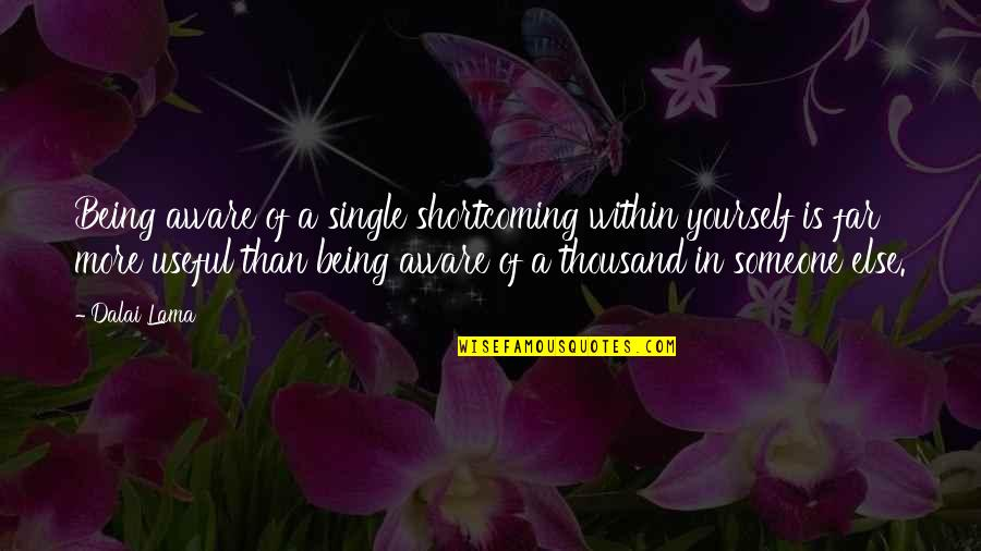 Being Single Quotes By Dalai Lama: Being aware of a single shortcoming within yourself