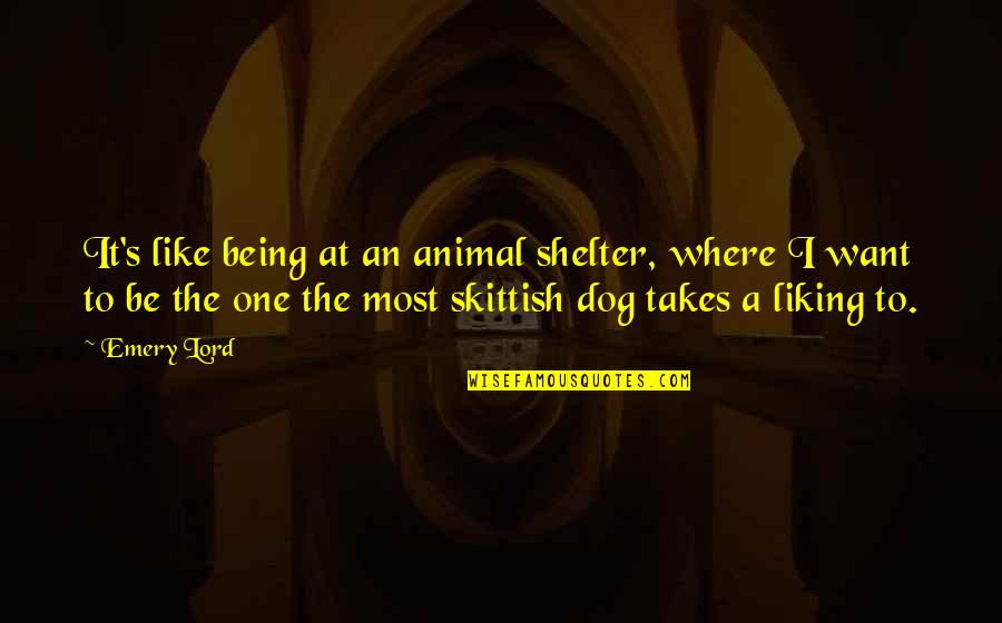 Being Skittish Quotes By Emery Lord: It's like being at an animal shelter, where