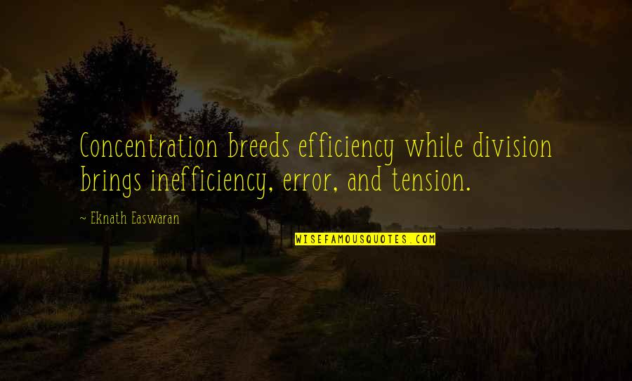 Being Stuck In Your Mind Quotes By Eknath Easwaran: Concentration breeds efficiency while division brings inefficiency, error,