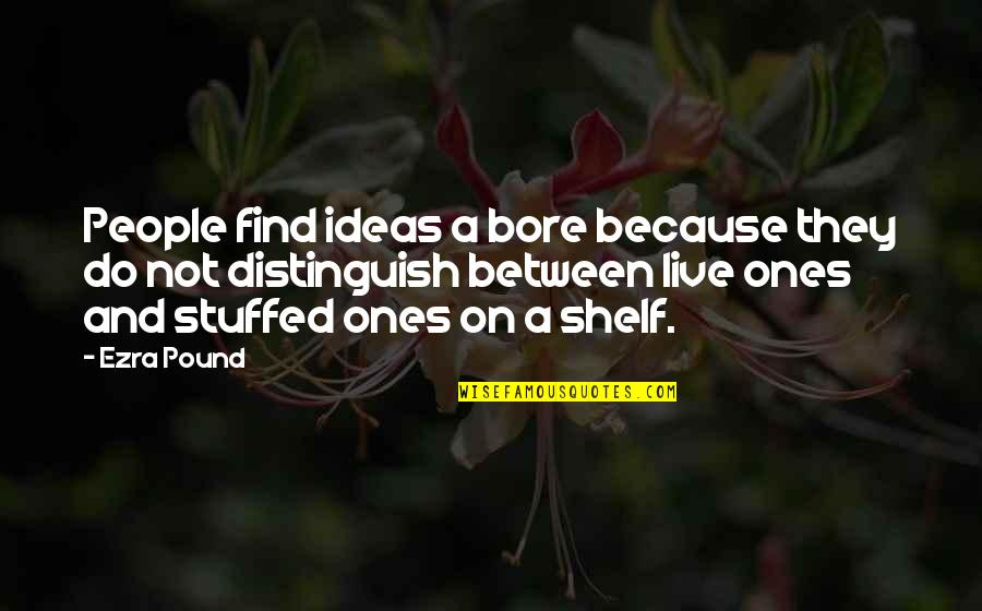 Being The Only One Who Cares Quotes By Ezra Pound: People find ideas a bore because they do
