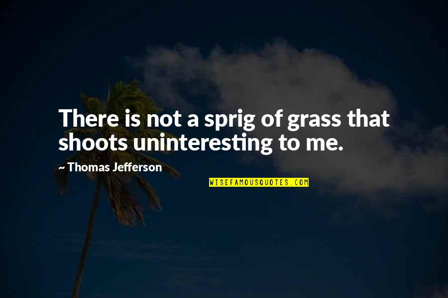 Being Unloved Tagalog Quotes By Thomas Jefferson: There is not a sprig of grass that