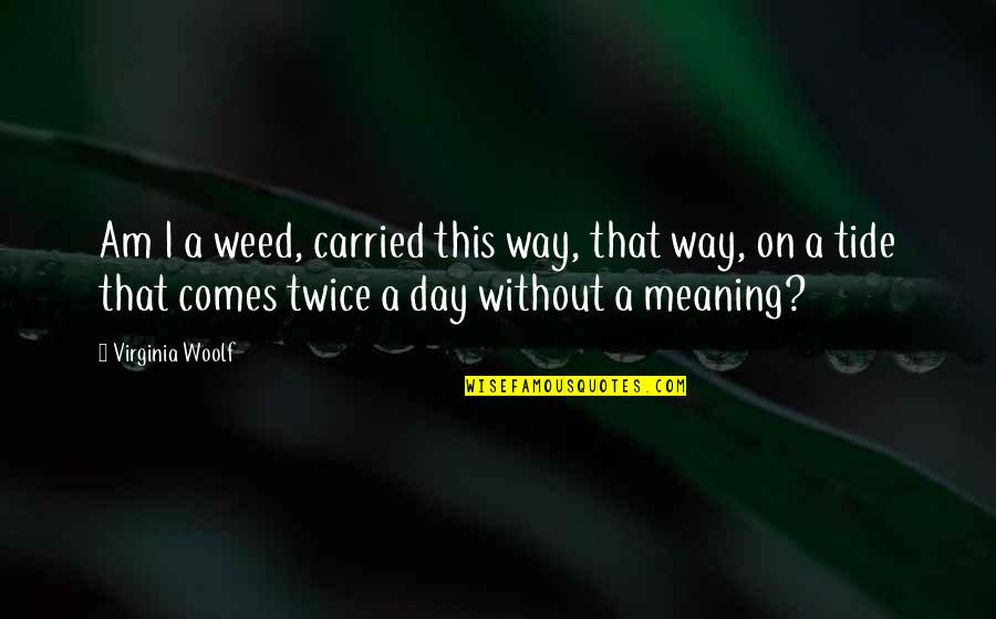 Belabour Quotes By Virginia Woolf: Am I a weed, carried this way, that