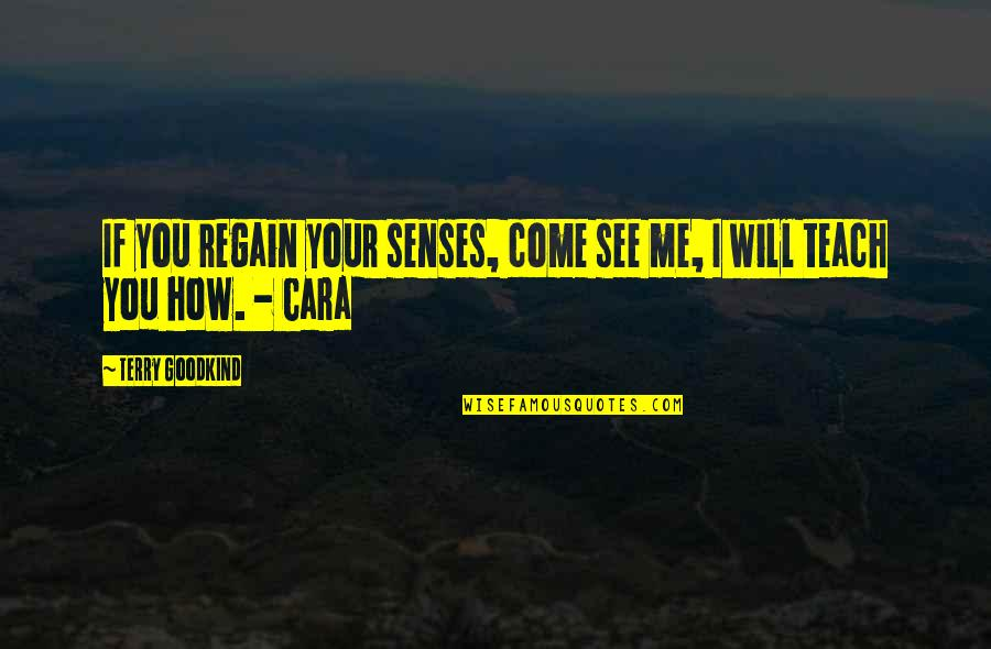 Belated Anniversary Wishes Quotes By Terry Goodkind: If you regain your senses, come see me,