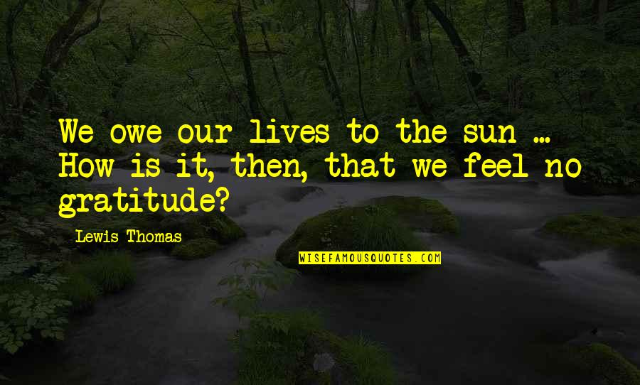 Belcher's Bluff Quotes By Lewis Thomas: We owe our lives to the sun ...