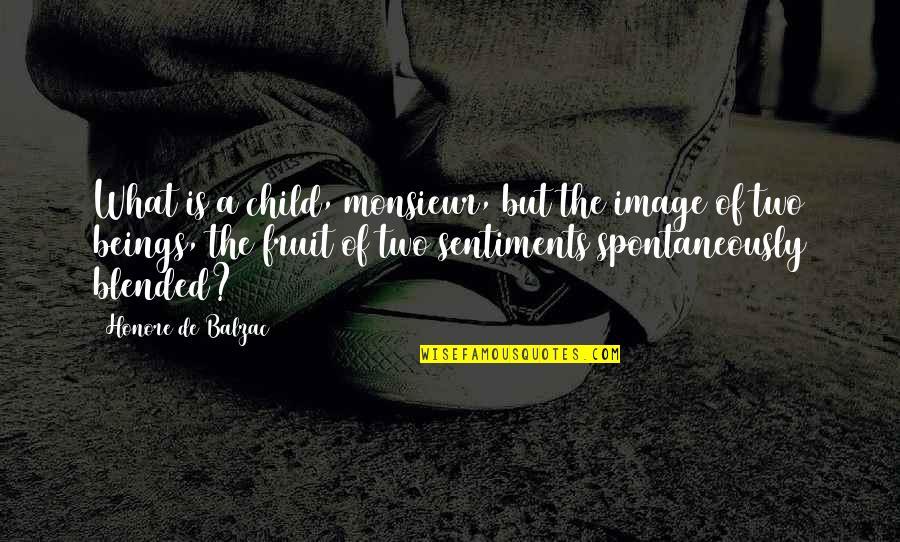 Ben Hunt Davis Quotes By Honore De Balzac: What is a child, monsieur, but the image