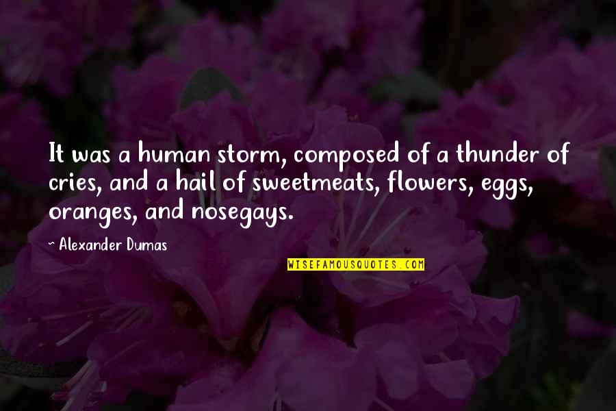 Ben Sollee Quotes By Alexander Dumas: It was a human storm, composed of a