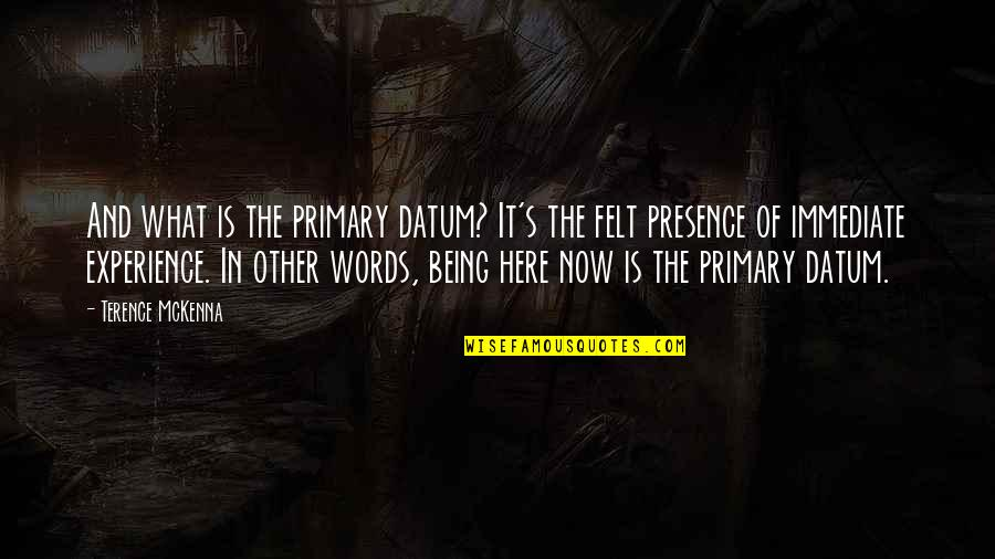Benenden Quotes By Terence McKenna: And what is the primary datum? It's the